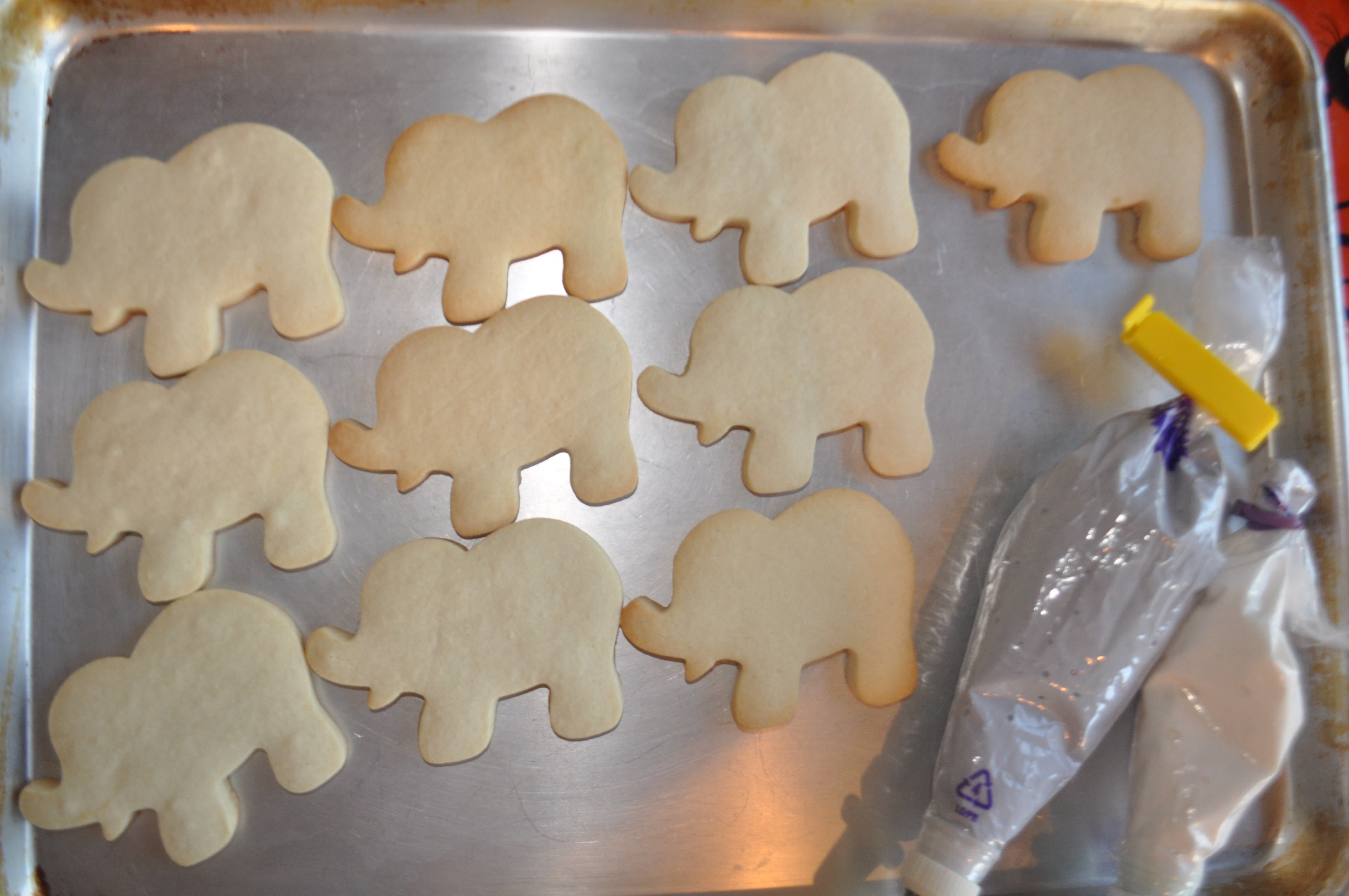 How To Make An Elephant Cookie Suz Daily